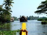 The famed backwaters