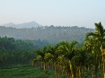 Wayanad, in brighter times